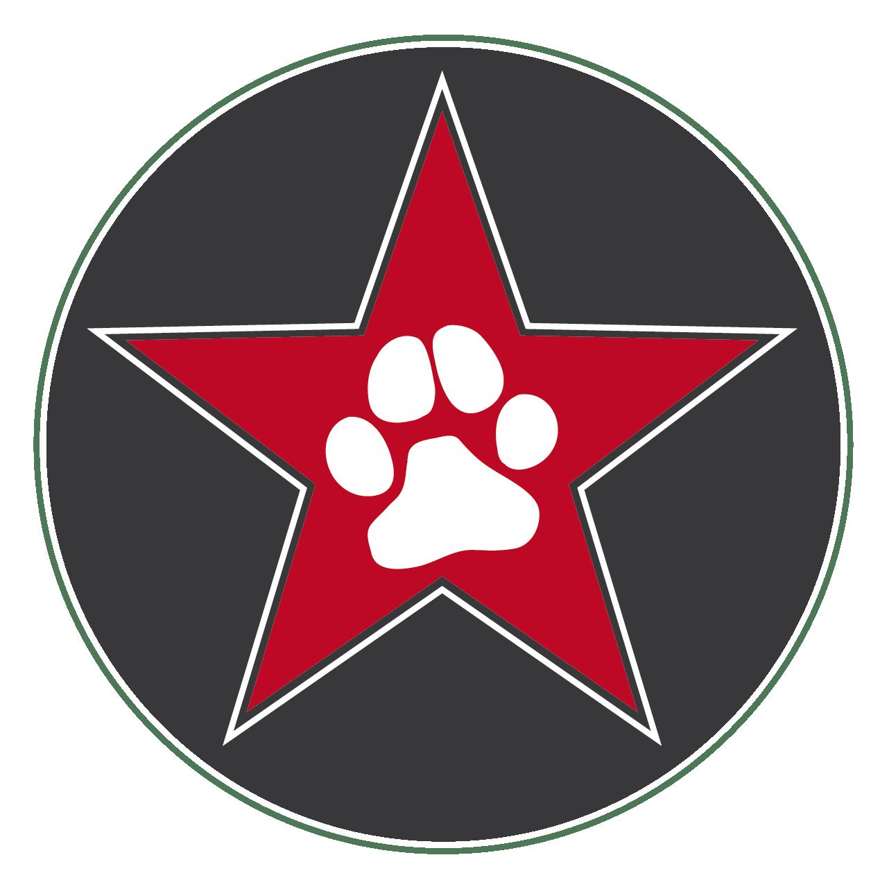 Logo Stern